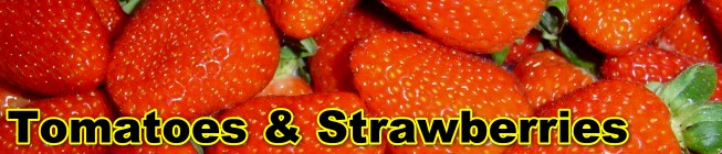 Ricardoes Strawberries